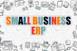 erp-software-small-business